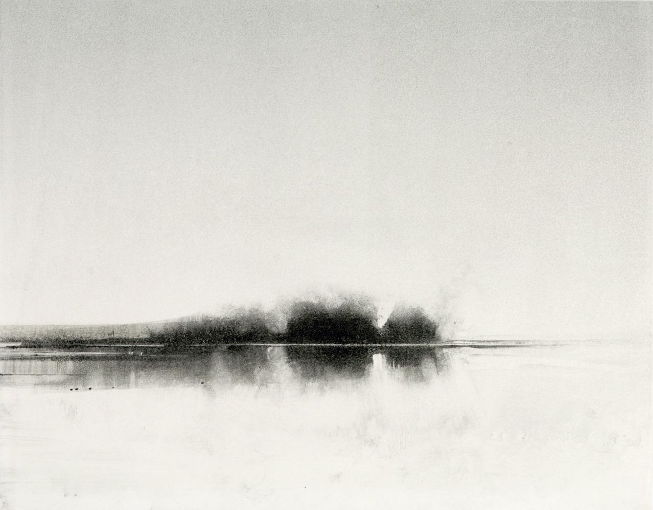 19-nisqually-marsh