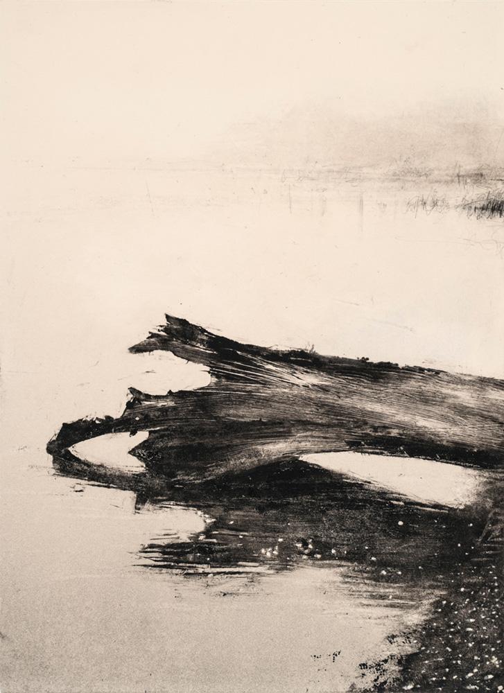 28.fallen-tree-study