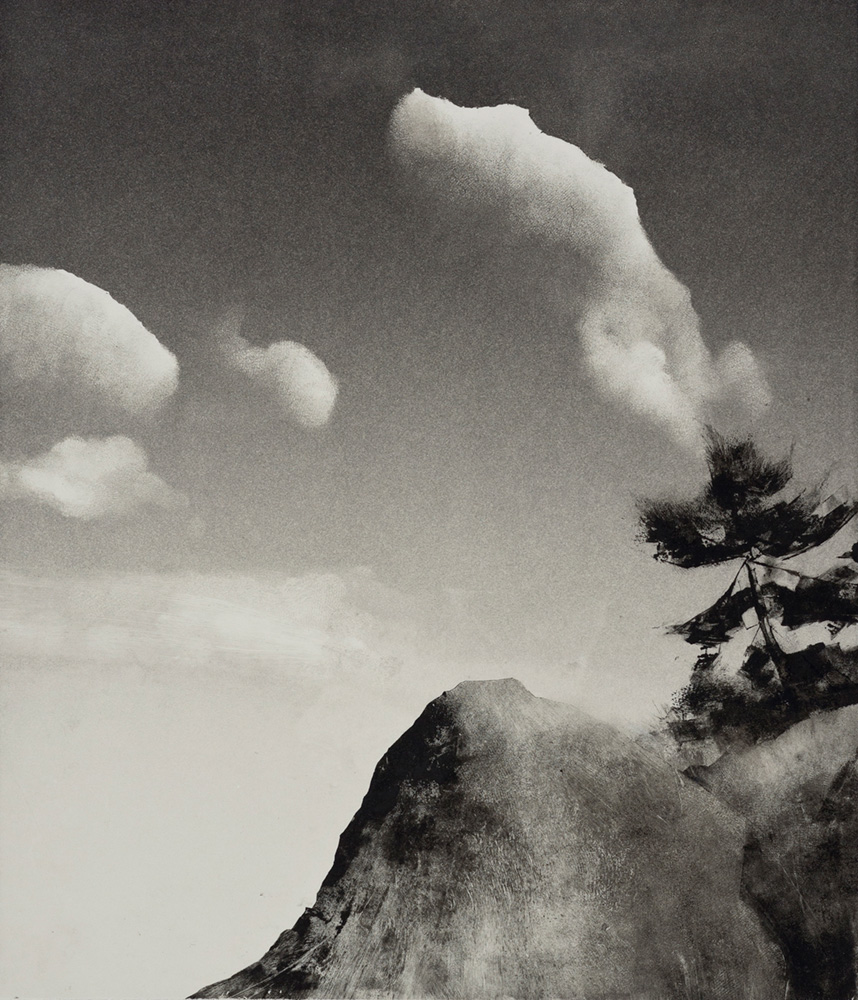 4-rockaway-pine