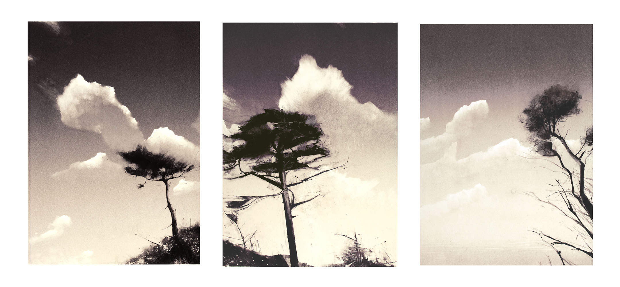 9-port-townsend-triptych