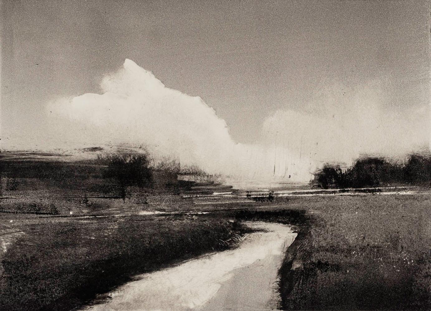 skagit-field